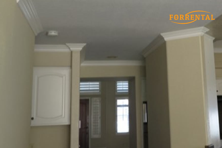 homes for rent in 92882,
